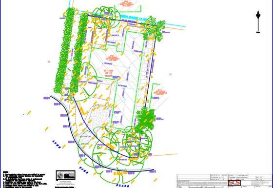 Topographic Survey 1